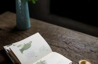 夜读 | 人生路上:看远、看宽、看淡
