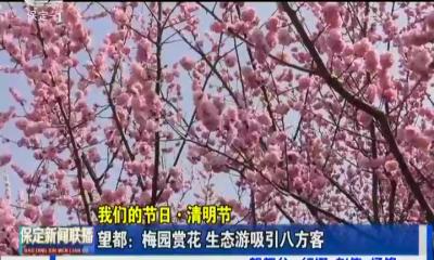 2019-04-07 保定新闻联播