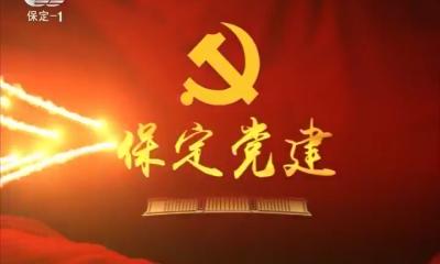 2019-05-10 保定黨建