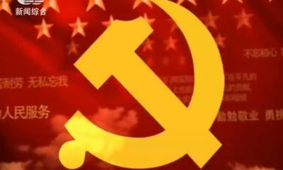 2020-04-08 保定党建